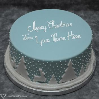 Amazing Christmas Greeting Decorated Cake With Name