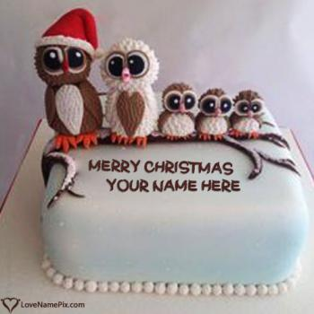 Cute Owl Family Christmas cake With Name